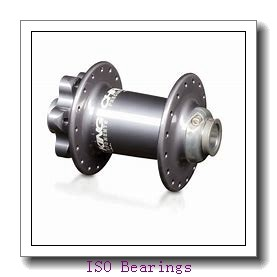 ISO NP305 cylindrical roller bearings