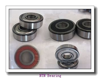 NTN KBK17×22×22X1 needle roller bearings