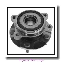 Toyana GE 030 ES plain bearings