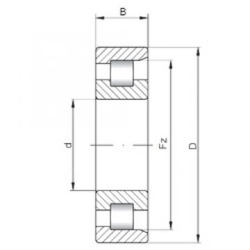 ISO NF29/530 cylindrical roller bearings
