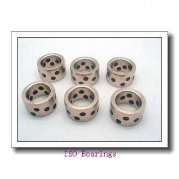 ISO 619/2 deep groove ball bearings